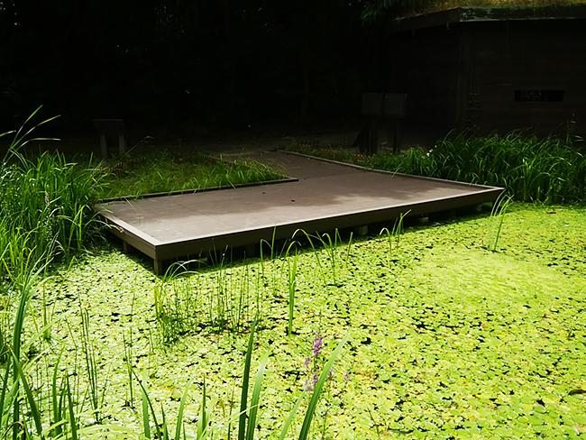 ビオトープのウッドデッキ施工例(徳島県板野郡 あすたむらんど)